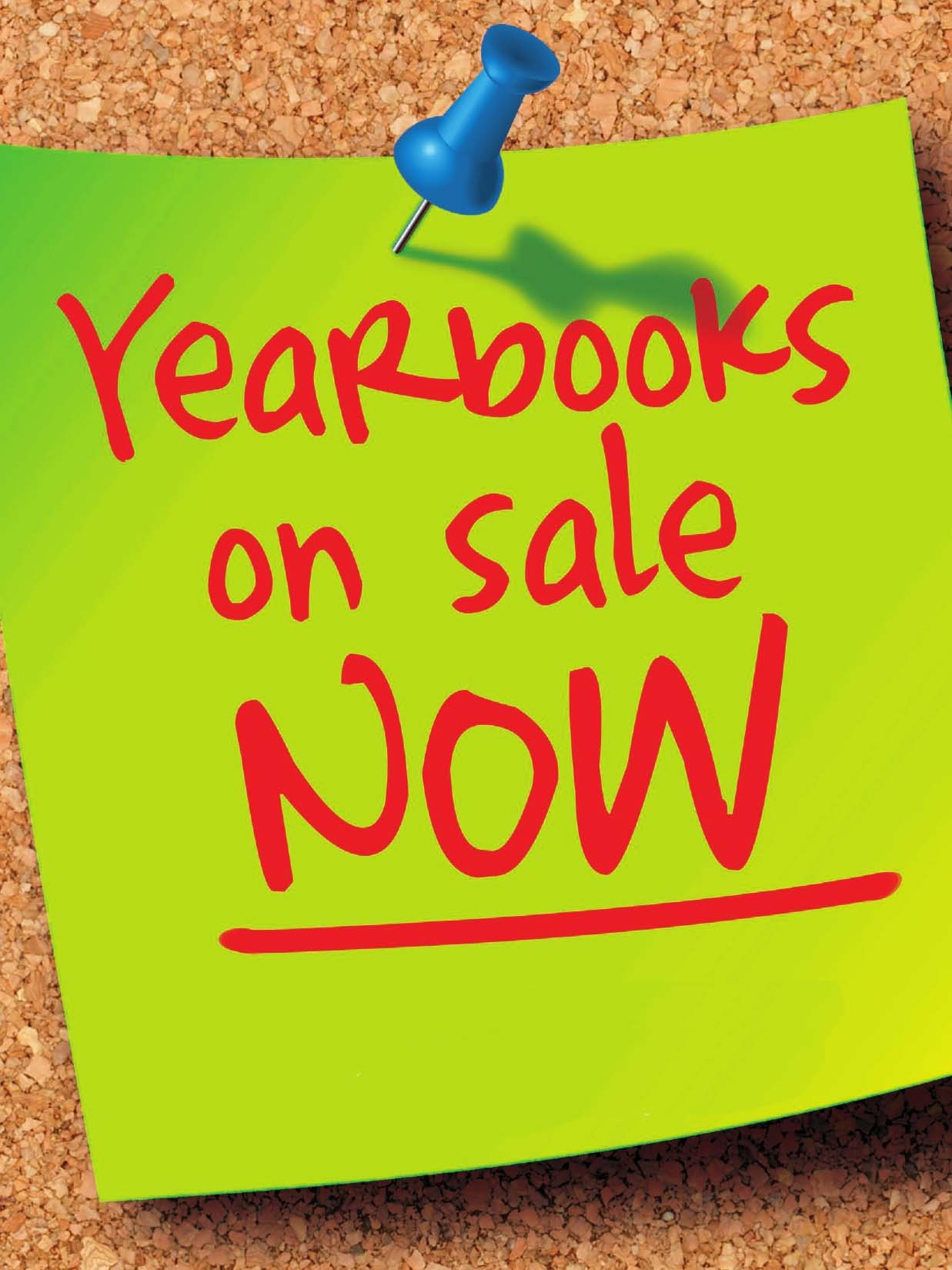 Get your 2017 LMHS Yearbook now for only $35.  Purchase online at ybpay.com